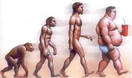 evolucion-obesidad