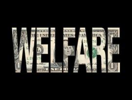 welfare4