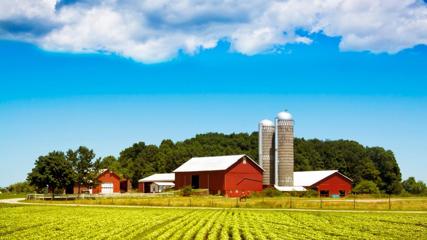 farmland_3