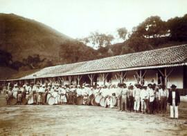 Slaves_in_coffee_farm_by_marc_ferrez_1885